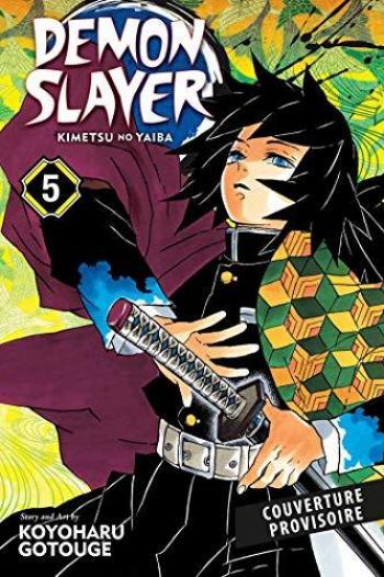 Couverture de l'album Demon Slayer - 5. Demon Slayer - Tome 05