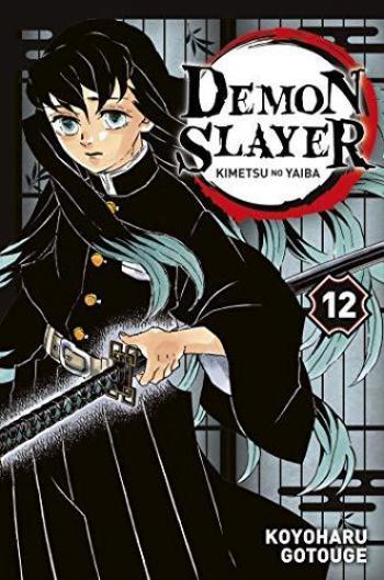 Couverture de l'album Demon Slayer - 12. Tome 12