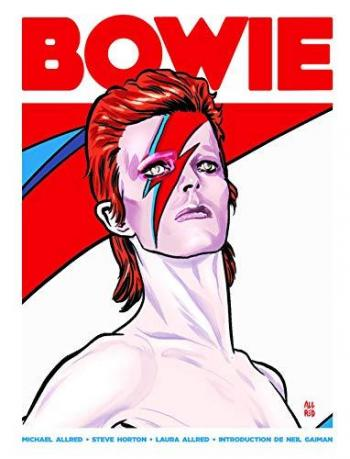 Couverture de l'album David Bowie, une vie illustrée (One-shot)