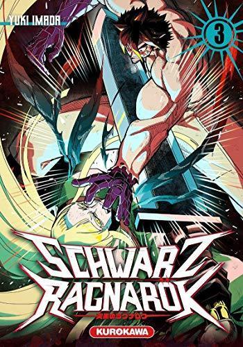 Couverture de l'album Schwarz Ragnarök - 3. tome 3