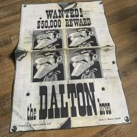 Extrait 1 de l'album Lucky Luke - 12. Les Cousins Dalton